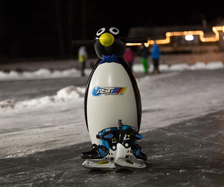 SFL-Winter-Eislaufen